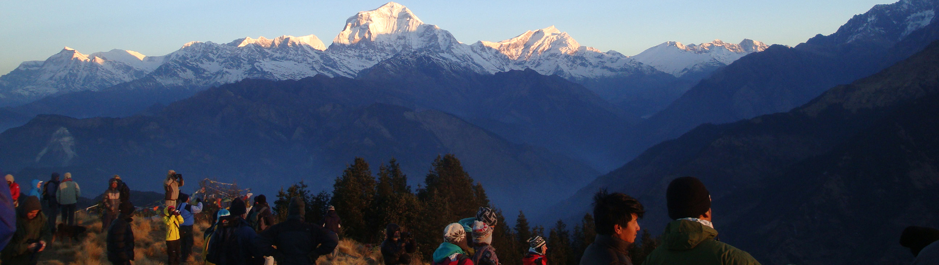 Namgyal Treks and Tours